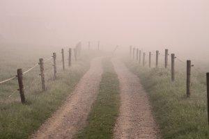 Nebel im Weg: Kein Durchkommen für die Sonne