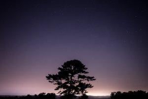 Mit 6-Zöller und Fernglas: Beobachtungen am Nachthimmel
