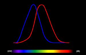 Hellempfindlichkeitskurven: Nachtsehen (blau) und Tagsehen (rot), Bild von HHahn (Eigenes Werk) Lizenz: [url=http://creativecommons.org/licenses/by-sa/3.0/deed.de]CreativeCommons CC-BY-SA-3.0[/url]