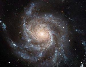 Die Feuerradgalaxie M101 ist in der Draufsicht zu sehen