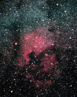NGC 7000: Der Nordamerikanebel ähnelt in seiner Form dem nordamerikanischen Kontinent